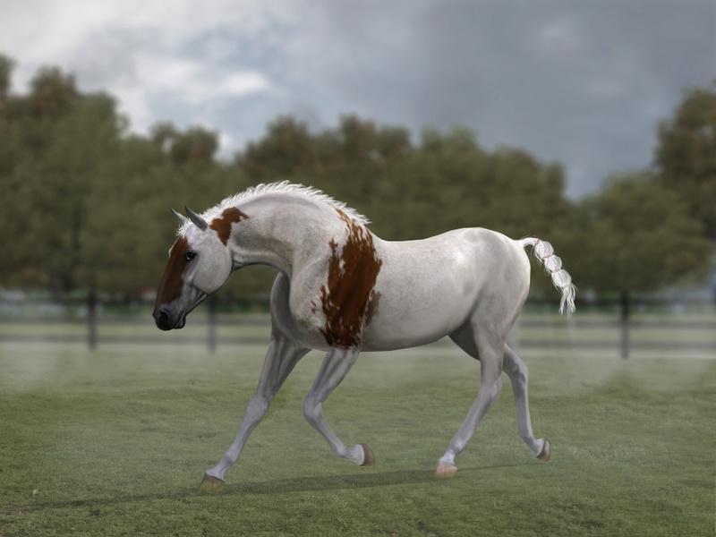 Регистрация лошадей в RHF 2 - Страница 5 Ao10