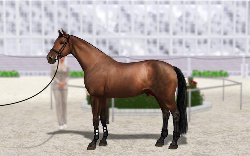 Регистрация лошадей в RHF 2 - Страница 5 Eed_1_10