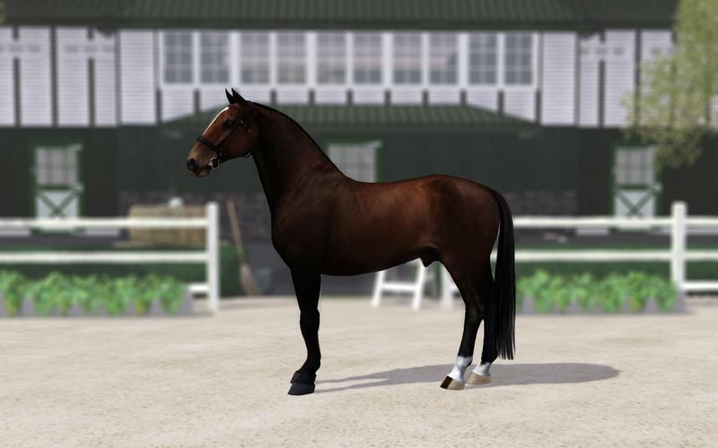 Регистрация лошадей в RHF 2 - Страница 5 Iai10