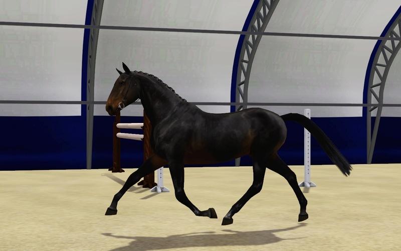 Регистрация лошадей в RHF 2 - Страница 5 Screen17