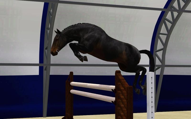 Регистрация лошадей в RHF 2 - Страница 5 Screen18