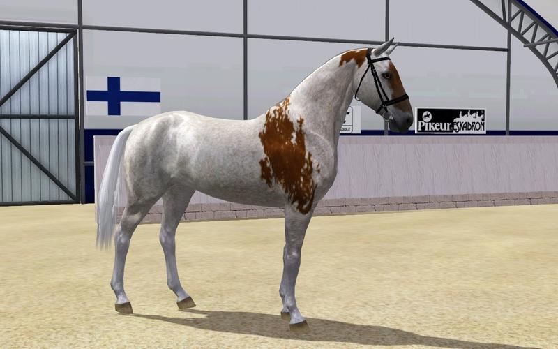 Регистрация лошадей в RHF 2 - Страница 5 Screen25