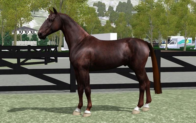Регистрация лошадей в RHF 2 - Страница 7 Screen34