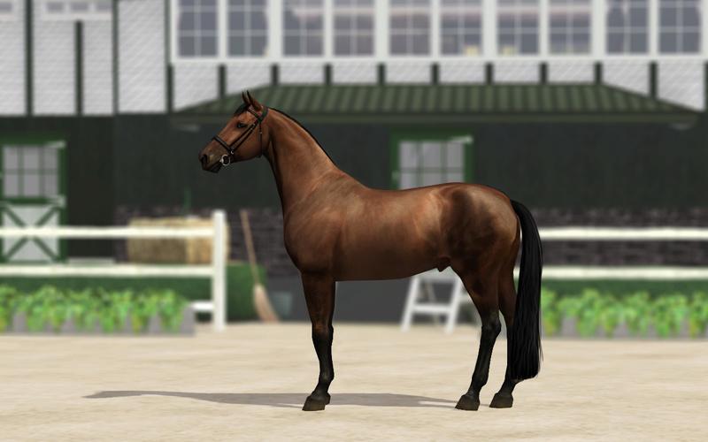 Регистрация лошадей в RHF 2 - Страница 5 Za_210