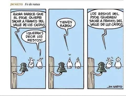 El hundimiento del PSOE  - Página 4 148
