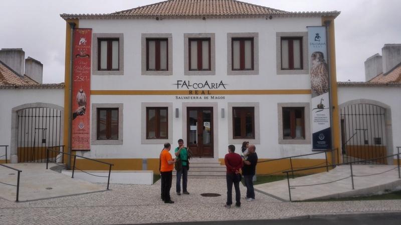 **Falcoaria Real  14-05-2017** Img_2014