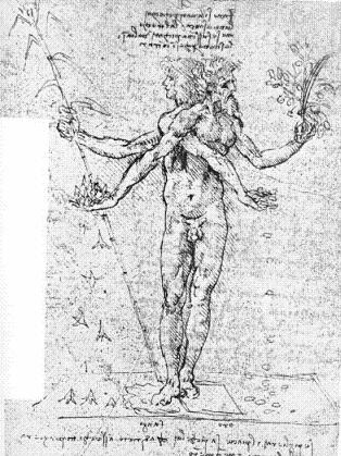 Os segredos de Leonardo da Vinci Sem_t112