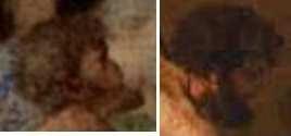 Os segredos de Leonardo da Vinci Sem_t155