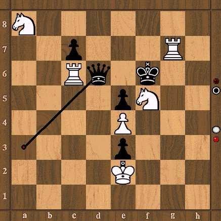 Lendas interessantes! Xadrez16