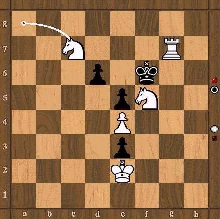 Lendas interessantes! Xadrez19