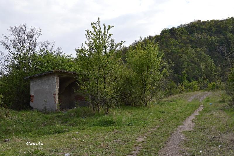 CFI Hunedoara-Govăjdia-Retișoara Dsc_0140