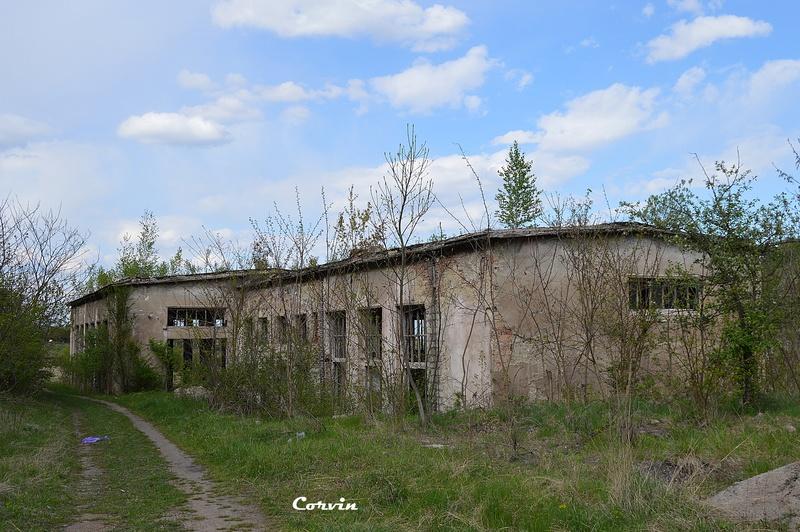 CFI Hunedoara-Govăjdia-Retișoara Dsc_0141