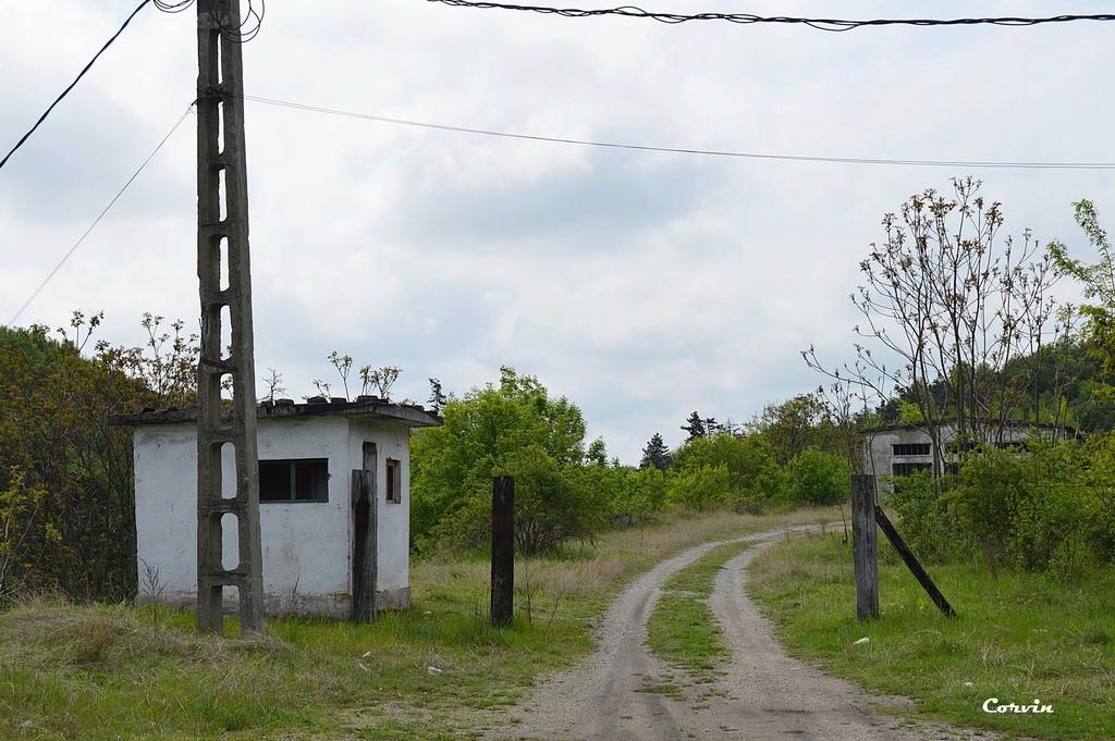 CFI Hunedoara-Govăjdia-Retișoara Dsc_0198