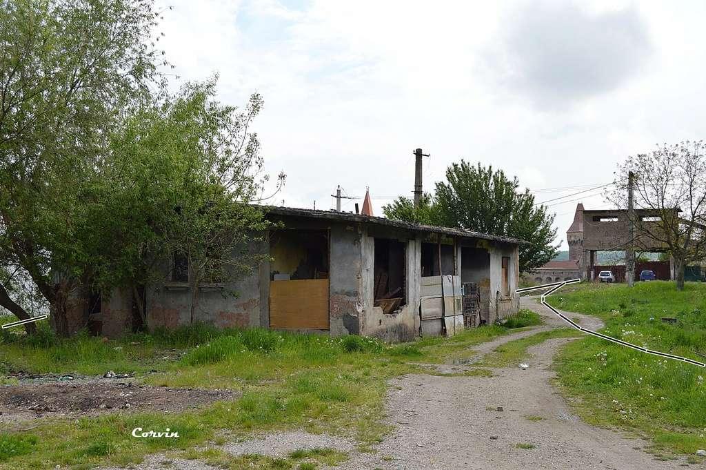 CFI Hunedoara-Govăjdia-Retișoara Dsc_0256