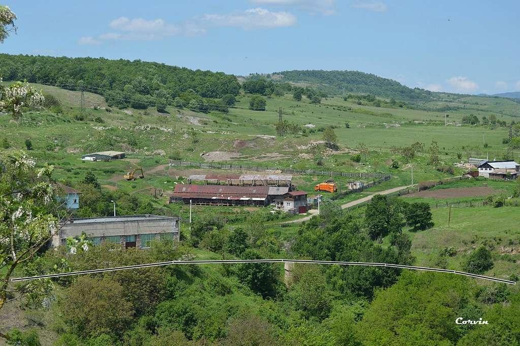 CFI Hunedoara-Govăjdia-Retișoara Dsc_0463