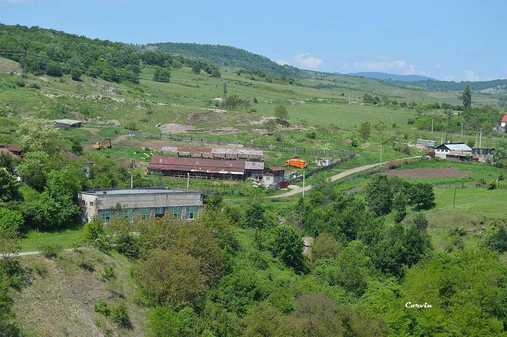 CFI Hunedoara-Govăjdia-Retișoara Dsc_0465