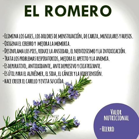 Romero................... Romero10