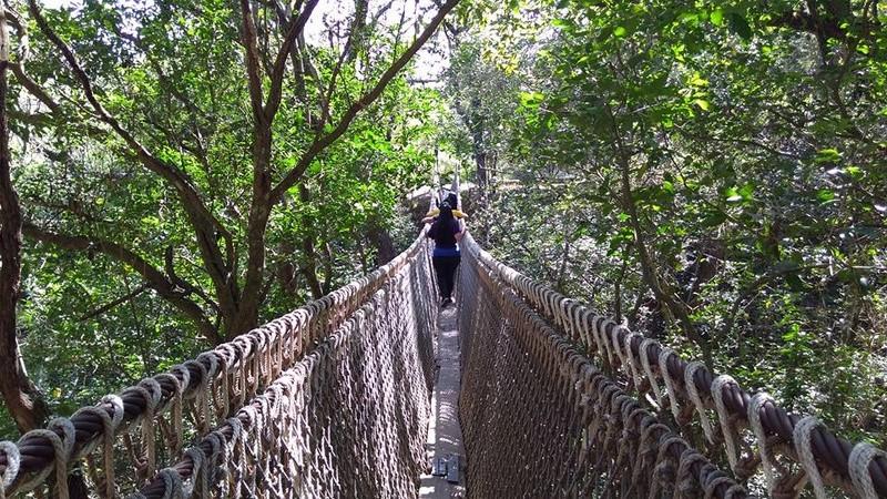 Puente 16807310