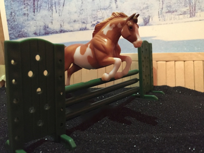 Performance - English Jumping Image11
