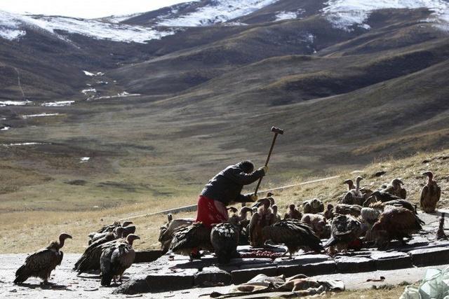 Небесное погребение в Тибете E157oj10