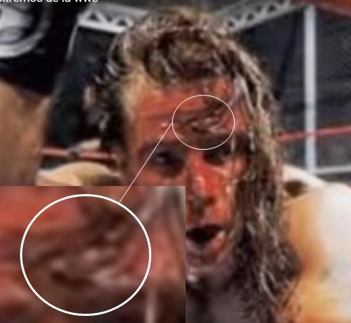 LO QUE NO SABÍAS DE LA WWE (Lucha Libre) Fonda10