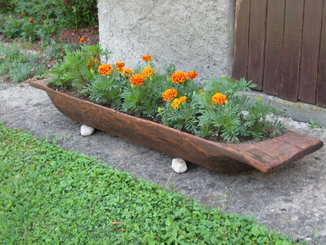 Vrtne biljke                        15578810