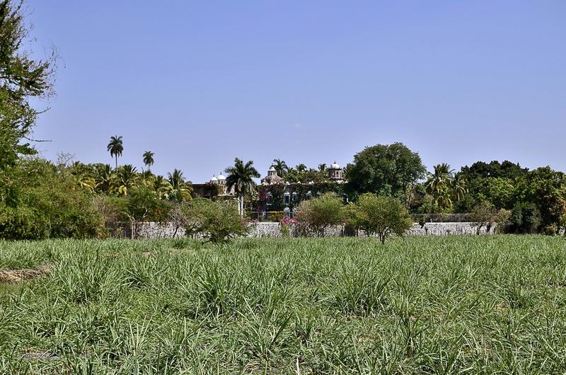 Búsqueda en hacienda en Morelos _dsc1612