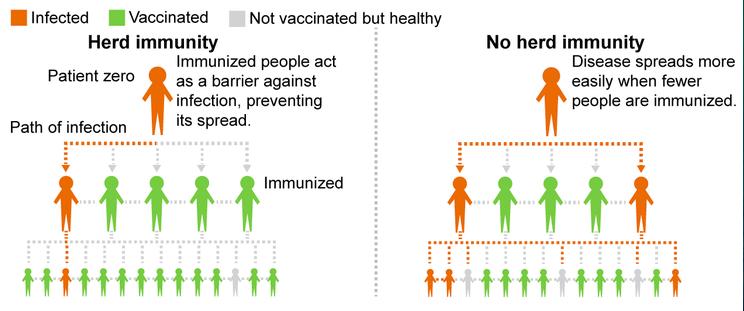 Virus y acciones sociales. Virus SARS-CoV-2 de la Covid 19. [2] - Página 39 1366_210