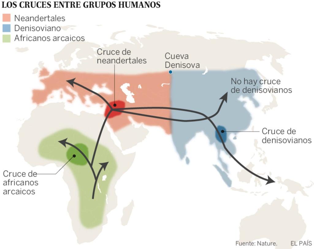 Por primera vez, reconstruyen el epigenoma de neandertales y denisovanos, con los que estamos emparentados, y lo han comparado con el nuestro. [Historia] 15351210
