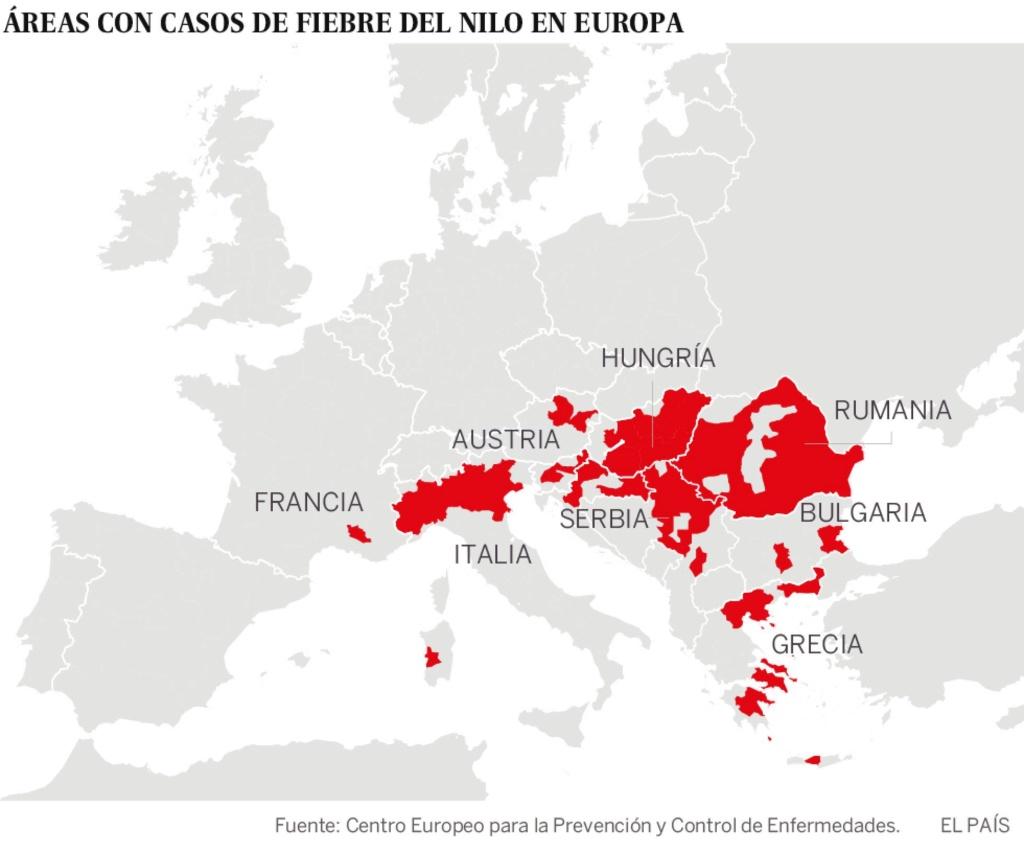 Fiebre del Nilo:  La Unión Europea sufre el peor brote que ya ha causado 85 muertes y más de 1.134 casos. 15375210