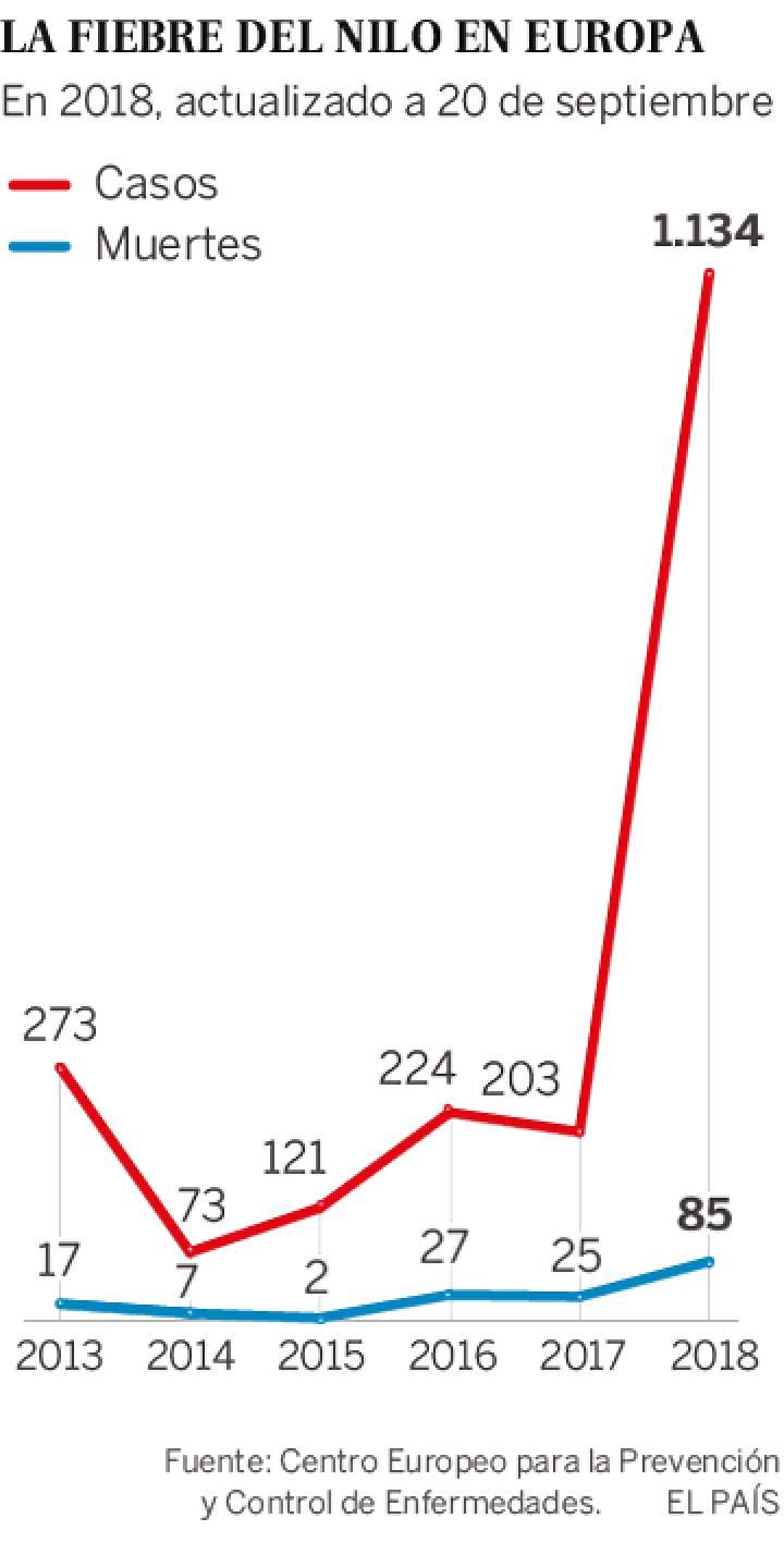 Fiebre del Nilo:  La Unión Europea sufre el peor brote que ya ha causado 85 muertes y más de 1.134 casos. 15375211