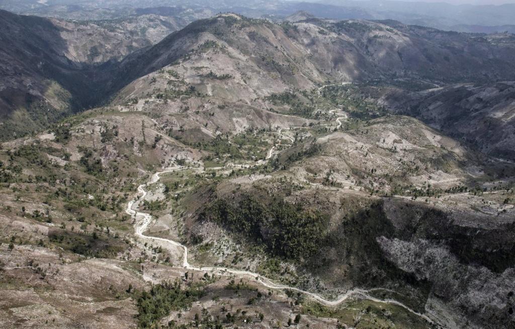 Haití después de enero de 2010 - Página 2 15408010