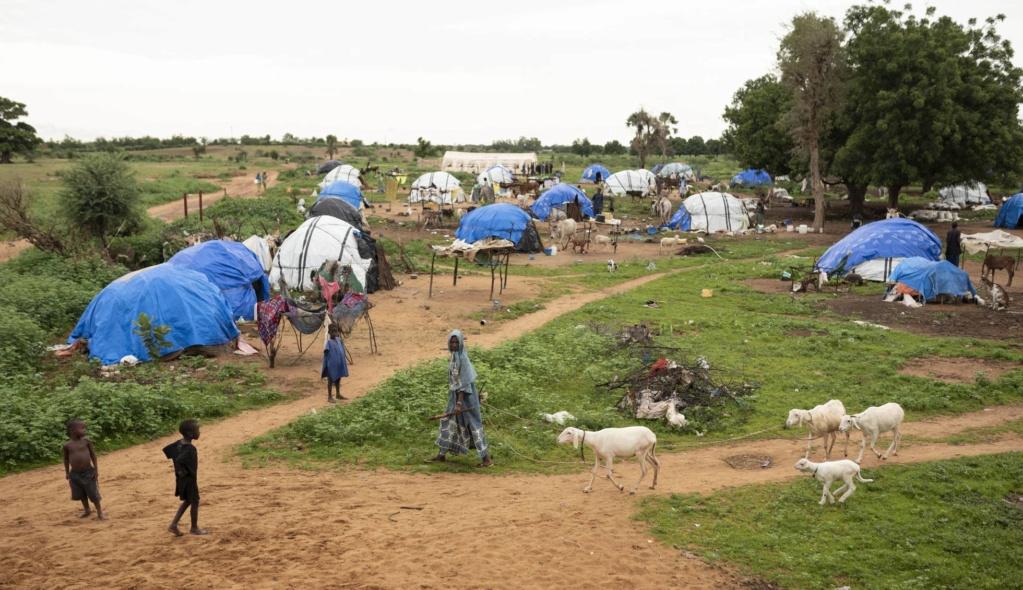 Mali, tuaregs, Azawad. Islamistas, tropas gubernamentales, intereses imperialista$. - Página 6 15692210