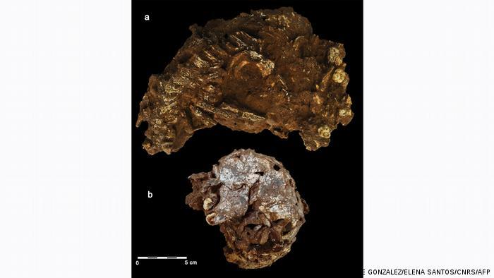 Descubren la tumba humana más antigua conocida en África. [Historia] 57450810