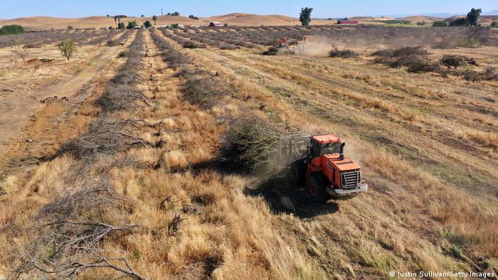 Agricultura. Mecanización... 57918810