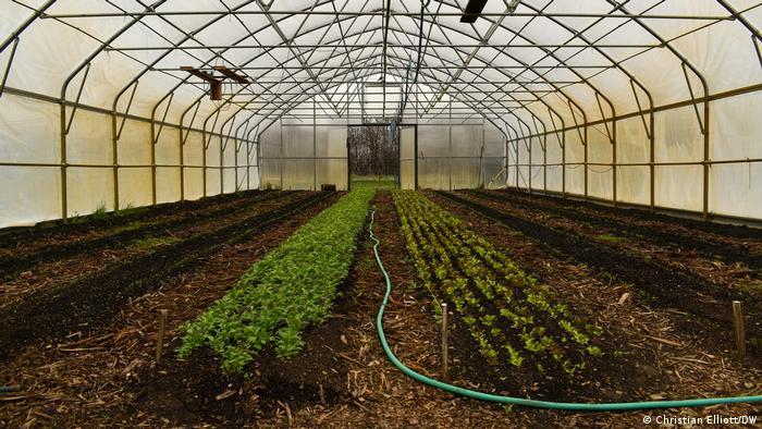 Agricultura. Mecanización... 57952010