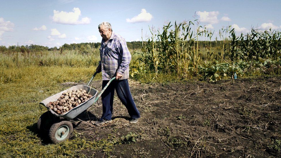 Rusia: economía, Estado y capitalismo. - Página 5 _1094611