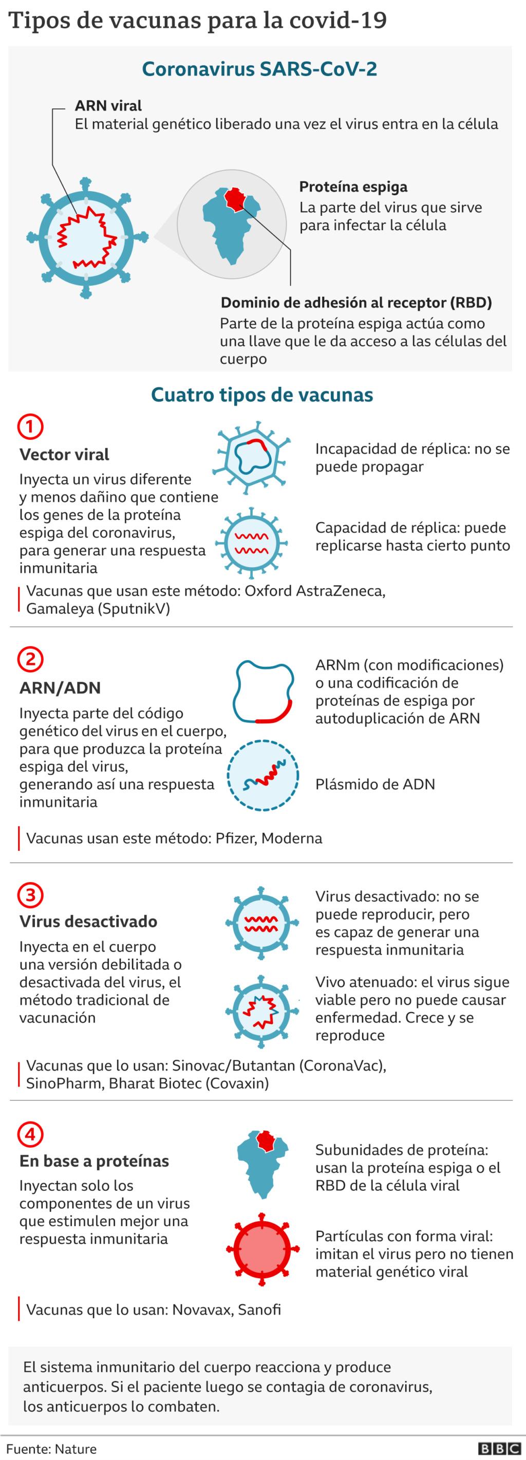 Adioscorona. Web sobre SARS-CoV-2 y pandemia Covid-19 en 11 idiomas. _1164210