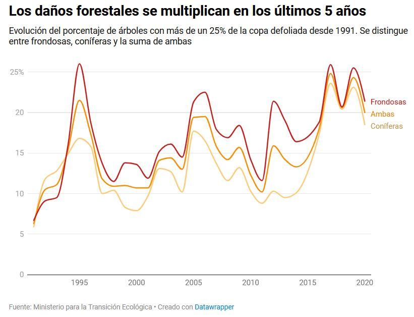 El cambio climático ha acelerado el deterioro de los bosques españoles en los dos últimos años  Bosque10