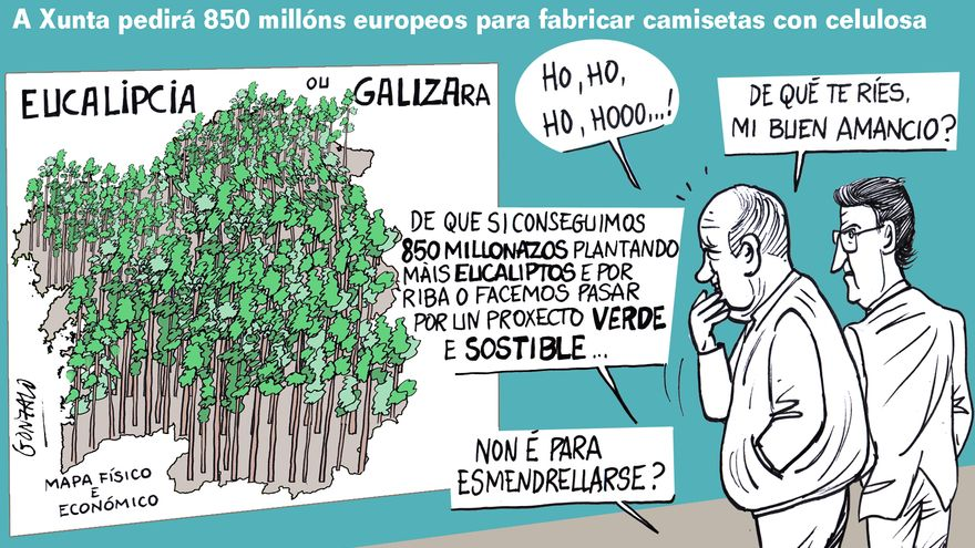 Más eucaliptos,  más   coníferas. Consecuencias de la sed de beneficio$ en la húmeda Galicia. El sector forestal. - Página 6 C9bef210