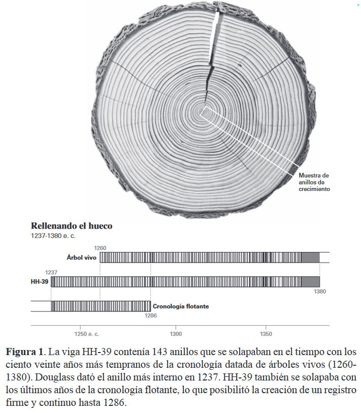 """""""Hay un mensaje de advertencia sobre nuestro futuro dentro de los árboles"""". (Valery Trouet autora del libro """"Escrito en los árboles"""") [Dendrocronología, paleoclimatología] Zarbol10"""