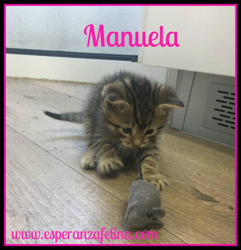 Santi, Candela y Manuela en adopción. Álava (F.N aprox: 03/05/2017) ¡Adoptados! Manuel10