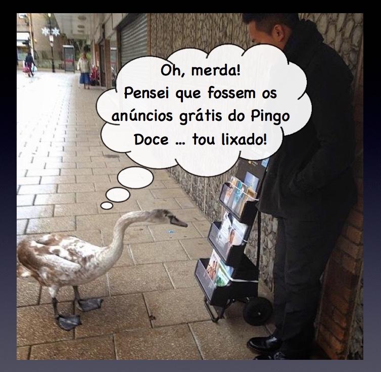 Memes sobre TJ - Página 2 Pato_012