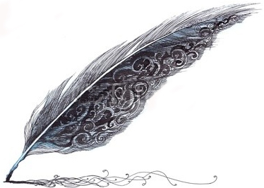 Envolées de plumes