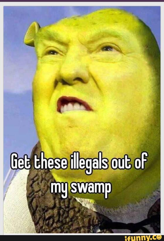 Meme Spam 1 5f171d10