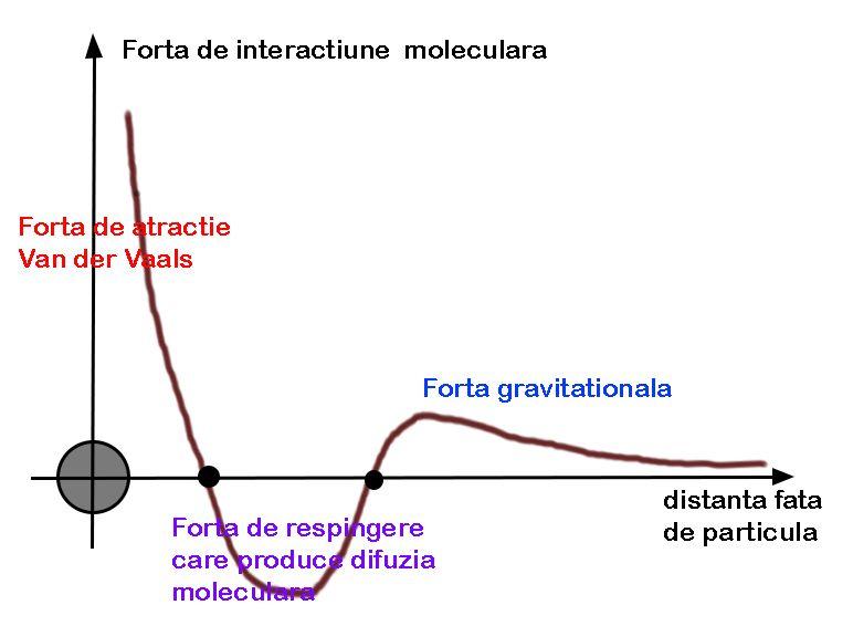 Explicarea Efectului  Seeback Forta_10