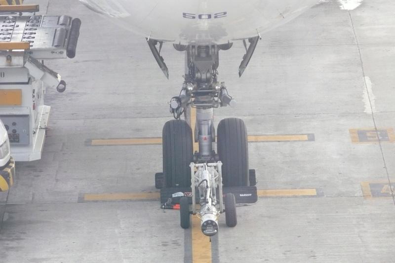 Guarulhos - Aeropuerto de Sao Paulo P1170715