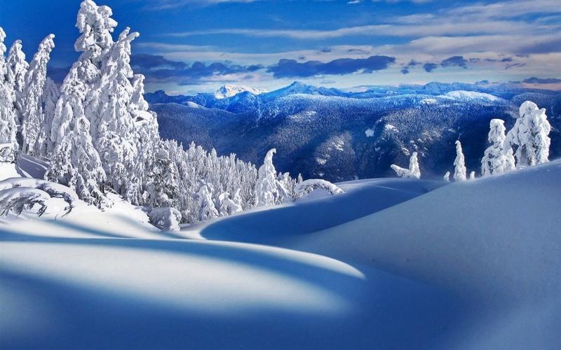 Dainn Aceroardiente Nieve10