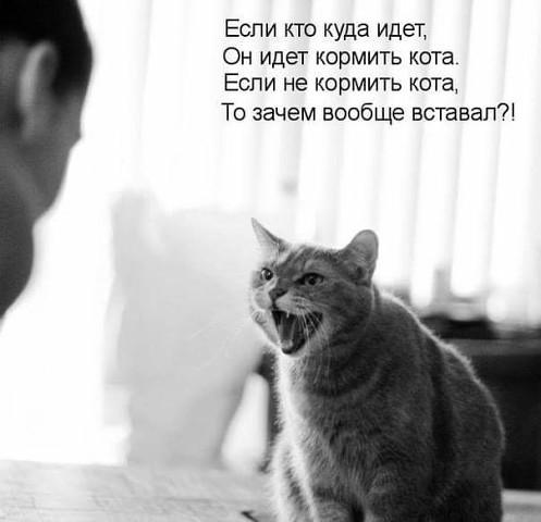 Поюморим? Смех продлевает жизнь) - Страница 3 Imagej10