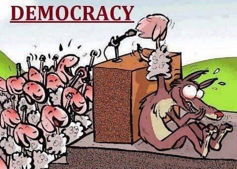 STARI-NOVI SVJETSKI POREDAK-ŠTO JE TO DEMOnKRACIJA(DEMOKRADIJA)? - Page 2 Ovce13